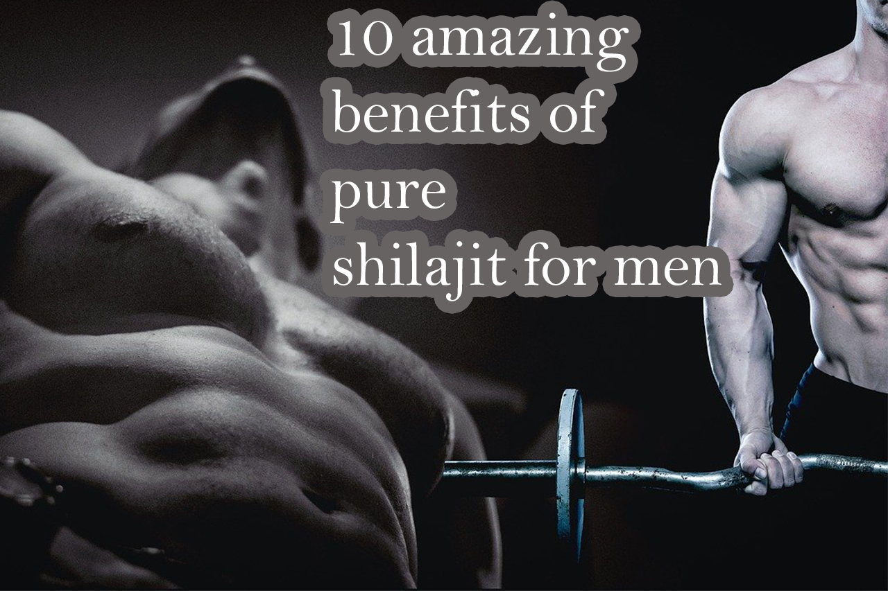 shilajit for men